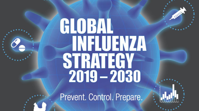 Global Influenza Strategy 2019-2030