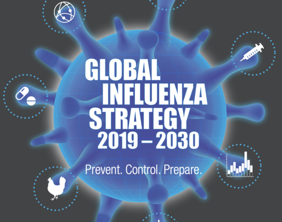 Global Influenza Strategy 2019-2030